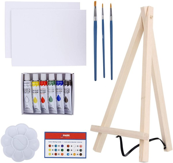Art Canvas Paint Set Supplies