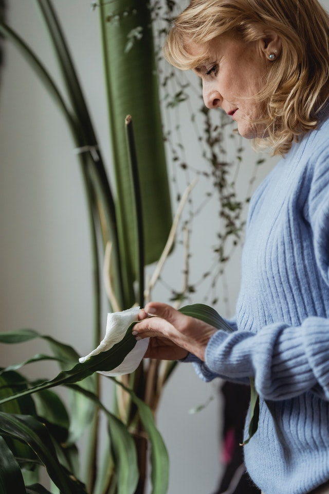 Selecting A Home Care Provider