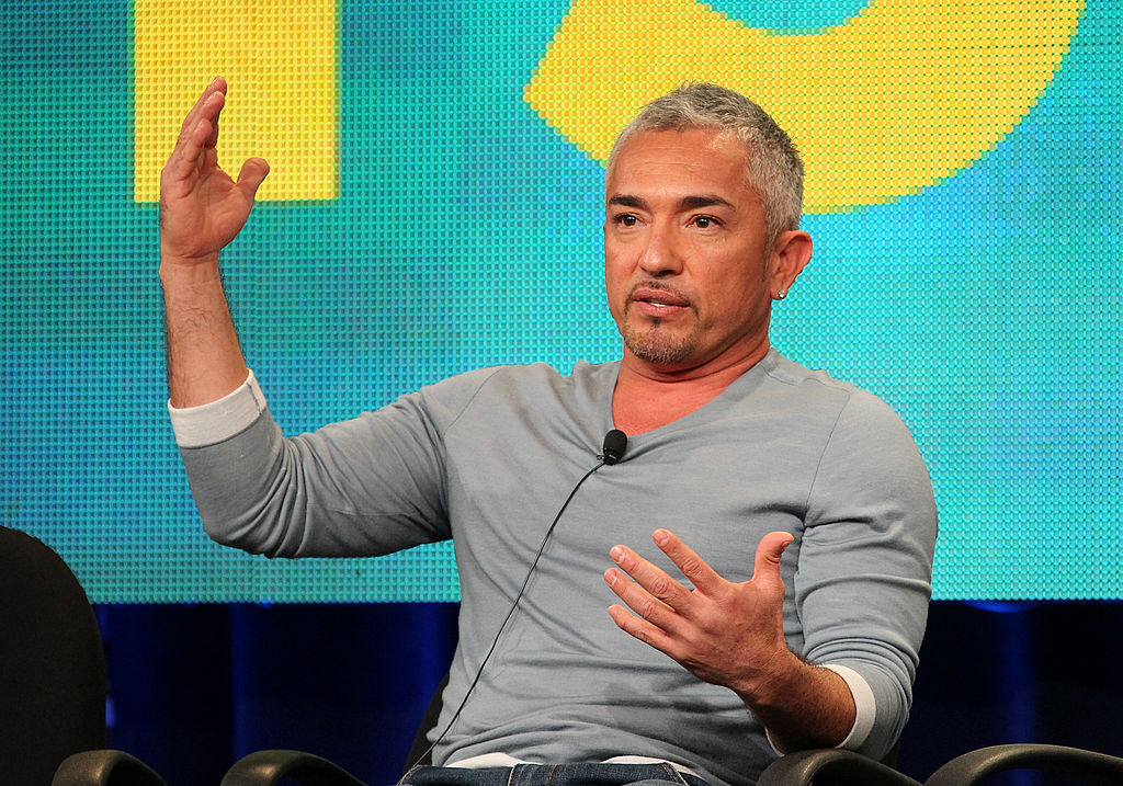 Cesar Millan Sued After Violent Pit Bull Murdered Queen Latifah's Dog, Attacked Gymnast Can No Longer Compete?